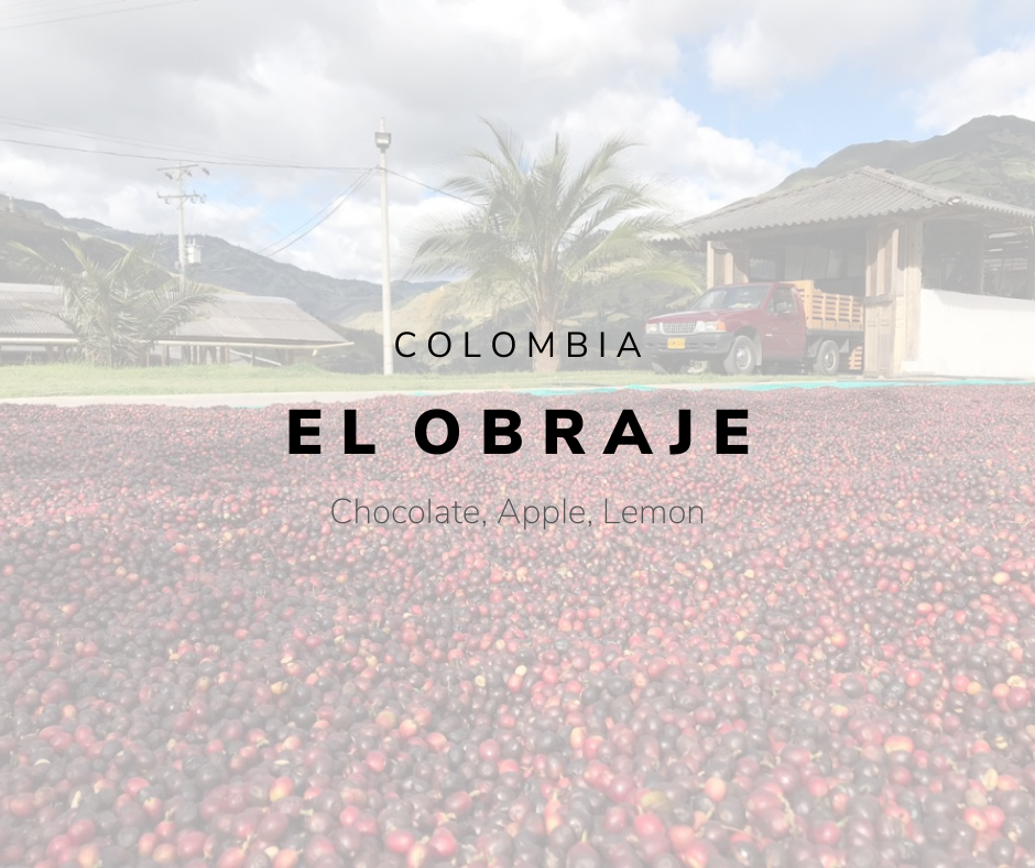 COLOMBIA - EL OBRAJE Caturra Washed